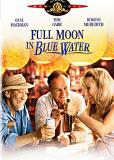 Полная Луна в голубой воде