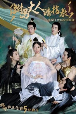 Принцесса! У вас пять мужей! (сериал)