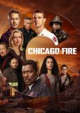 Чикаго в огне (сериал)