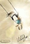 light_bird