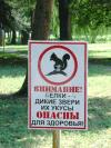 zhem4uzhinka